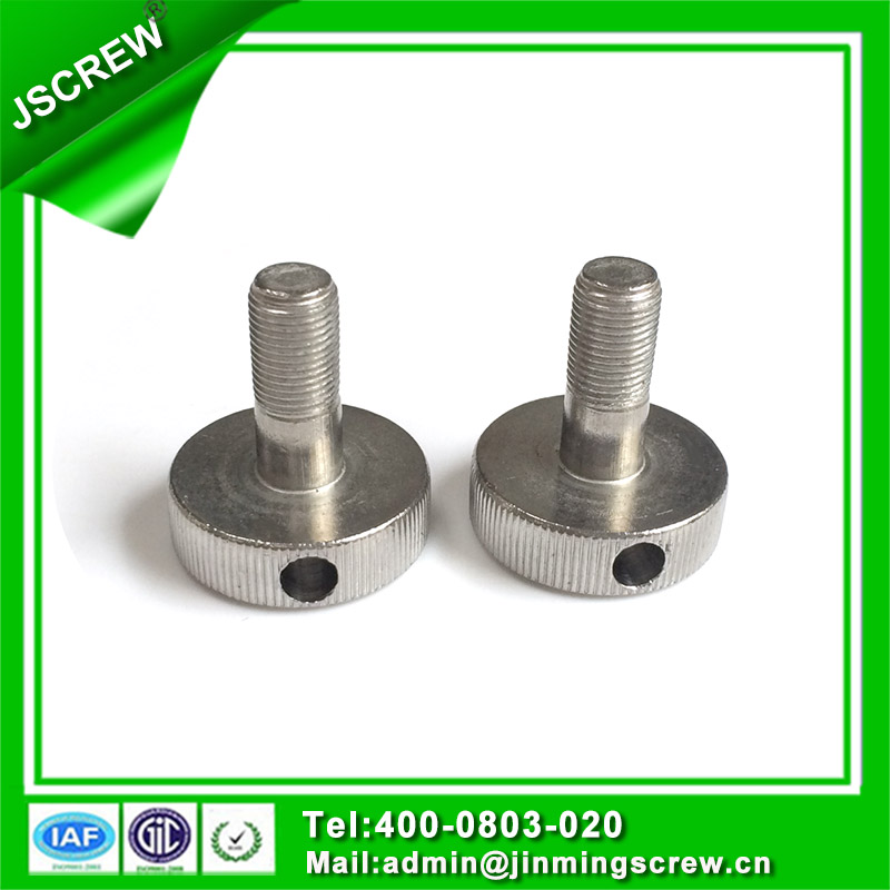 Cheese Head Special Stainless Steel Bolt