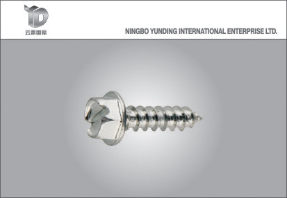 2016 DIN7504k Hex Washer Head Self Tapping Screw