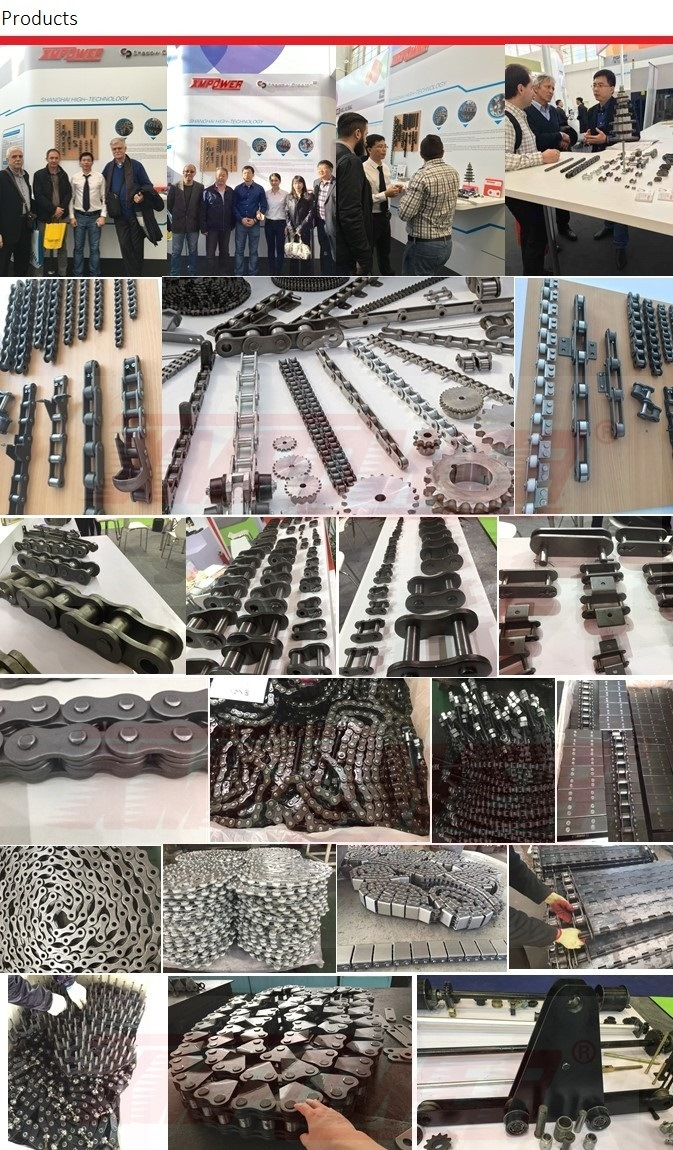 Motorcycle Normal Type Precision Roller Chains ANSI/ISO Standard