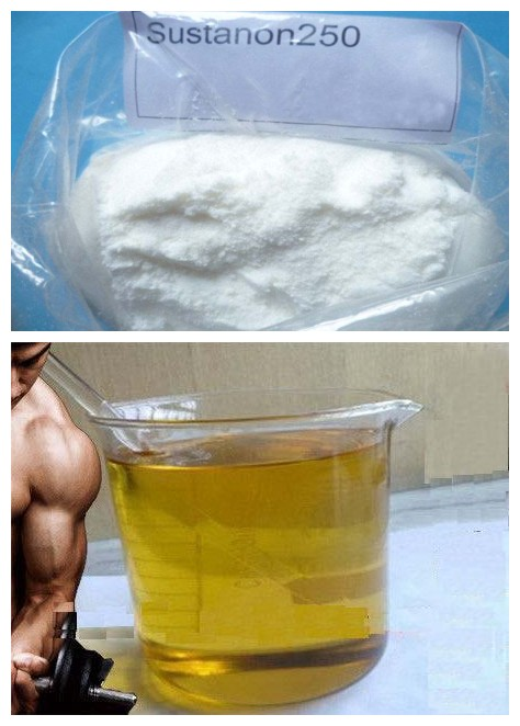Muscle Builder Weight Loss Homebrew Steroids Testosterone Sustanon