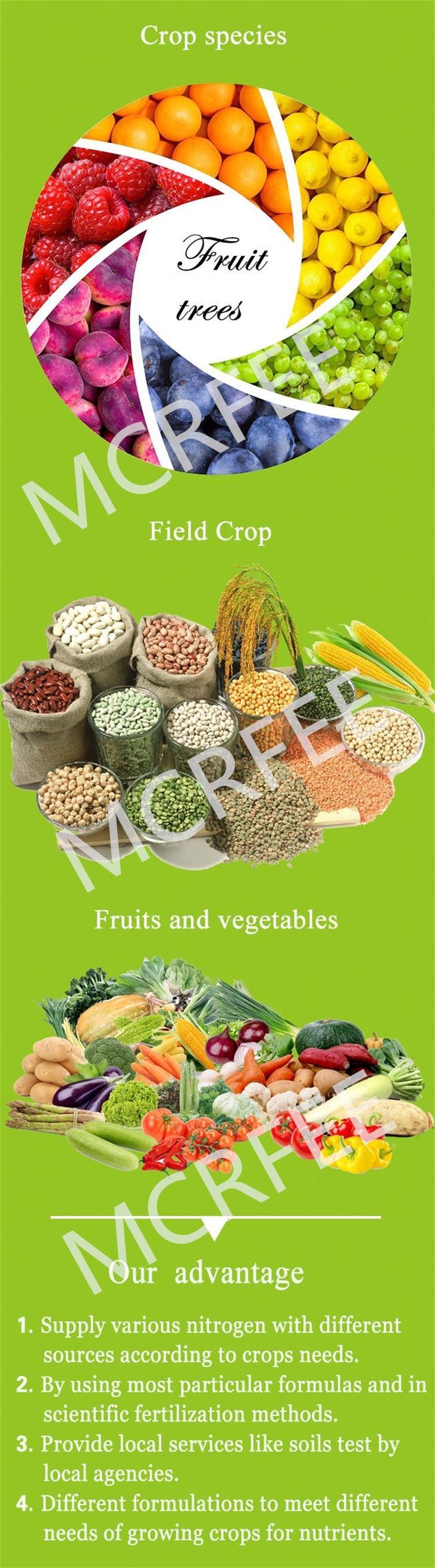 Rich Nitrogen Fertilizer NPK30.10.10+Te Fertilizer Supplier