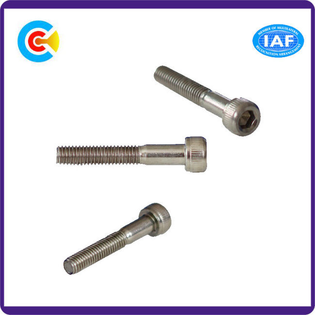 DIN/ANSI/BS/JIS Carbon-Steel/Stainless-Steel 4.8/8.8/10.9 Galvanized Inner Hexagon Socket Screw Machinery/Industry Fasteners