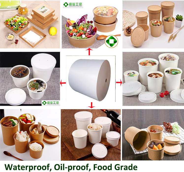 Single PE Coated Paper for Hot Drinking Cup, Noodle Bowl, Icecraem Bowl, Salad Bowl