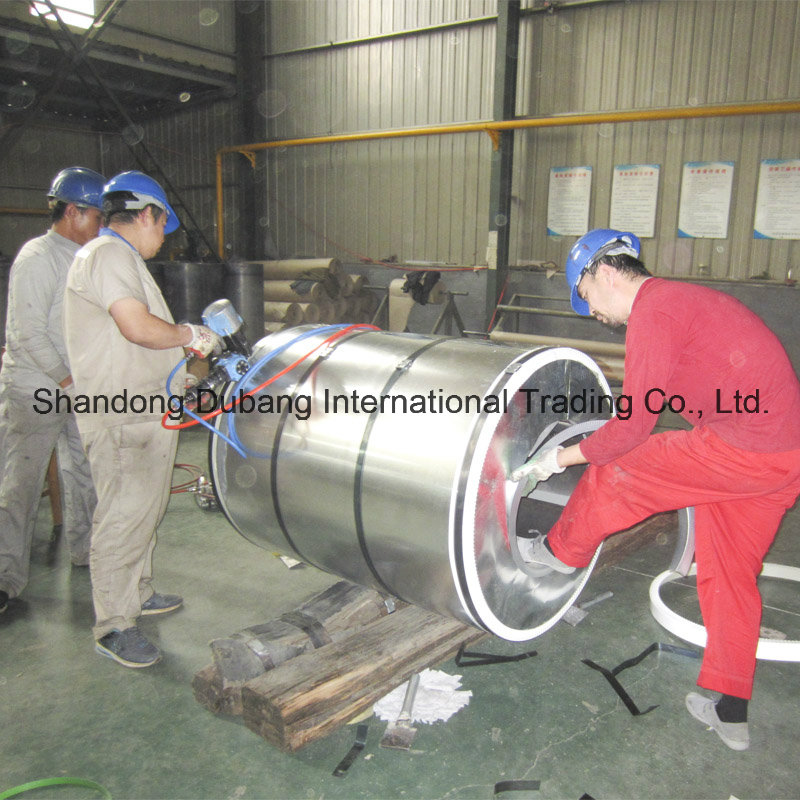 Prime Galvanized Steel Coil with Butterfly Print