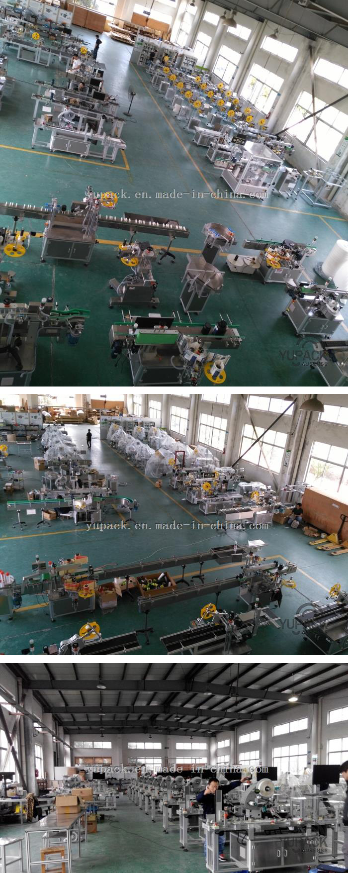PLC Control Carton Double Side Sealing and Labeling Packing Machine