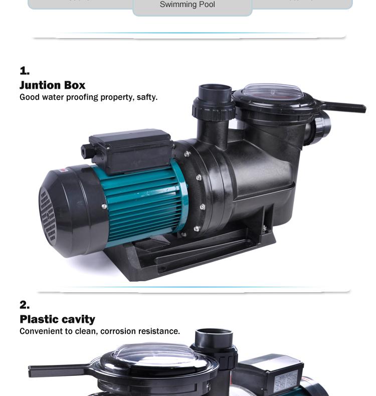 Single Speed Sea Water Pool Pumps