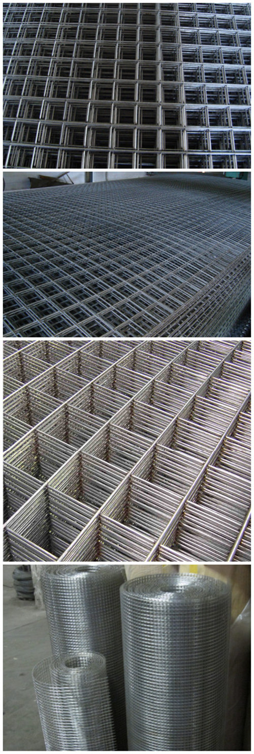 Easily Assembled Welded Wire Mesh with Moderate Price and Reliable Quality