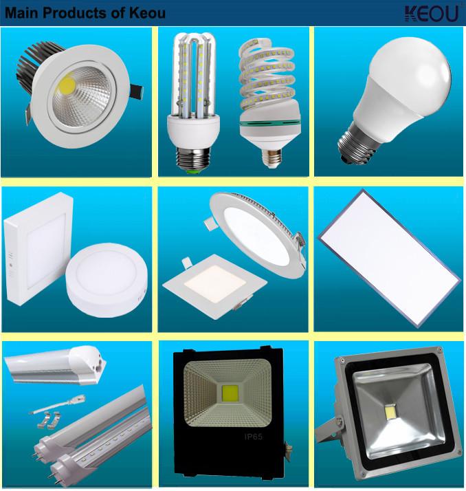 30W LED Floodlight Bridgelux Warm White Neutral White Cool White