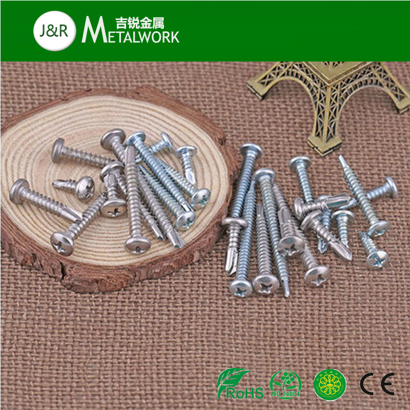 Stainless Steel Philip Pan Head Self Drilling Screw DIN 7504 (SS304 SS316)