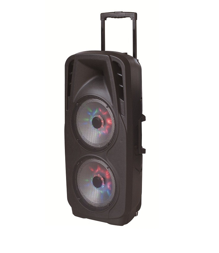 Super Big Power Woofer Double 10inch Plastic Trolley Battery Bluetooth Speaker with Light F73D