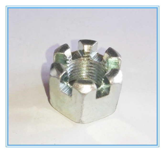 Ss Hex Slotted Nuts (DIN935)