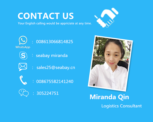 Shanghai Professional Shipping Agent to UK