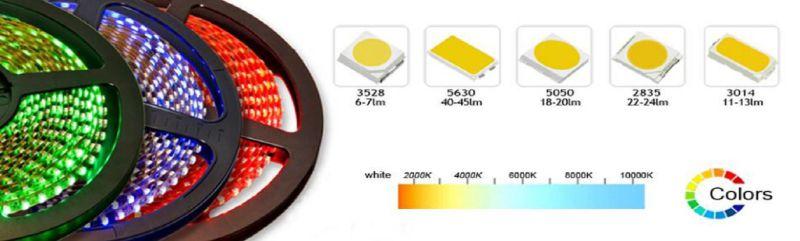 DC24V Dual White SMD5630 SMD LED Strip Light