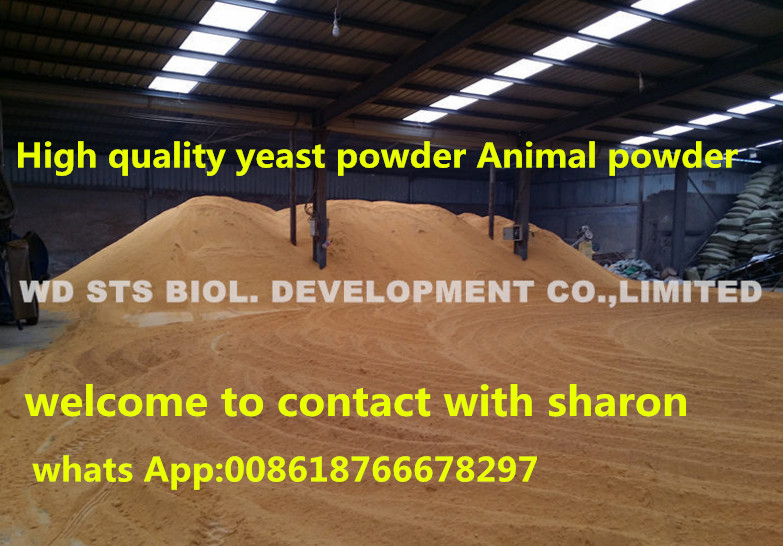 Hot Sale Yeast Powder for Animal with Lowest Price