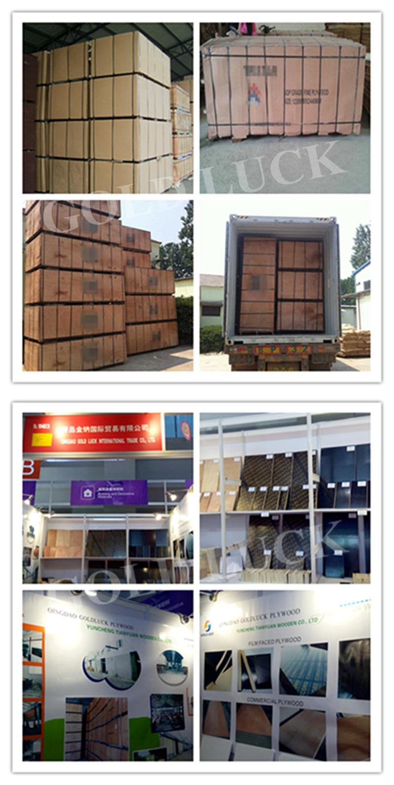 Construction Film Faced Plywood WBP / Marine Plywood (Poplar, Combi, Birch Core)