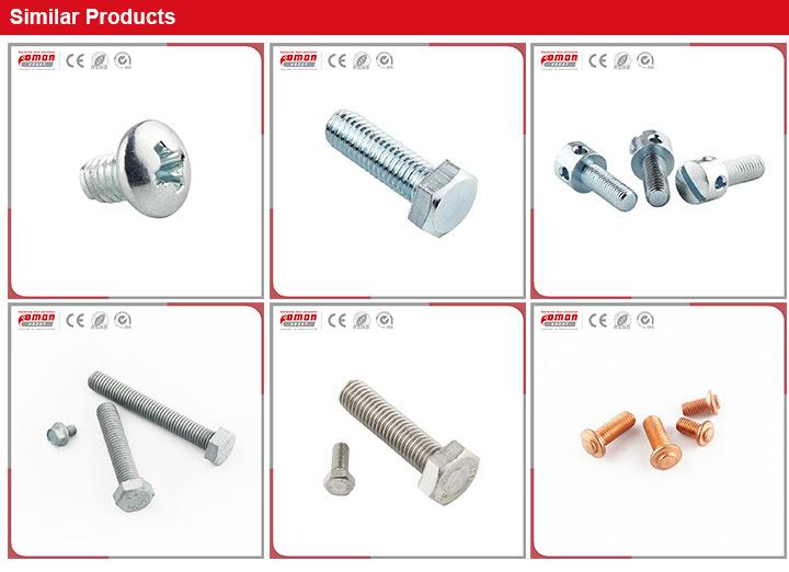 OEM Bolt Brass Stainless Steel Hex Rivet Nut for Building