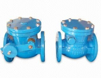 Domestic Water Systems Check Valve