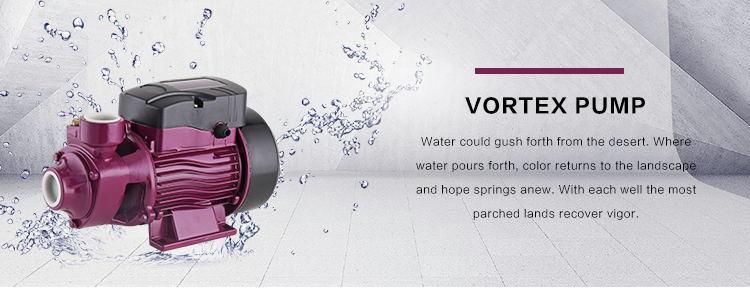0.5HP Small Vortex Peripheral Clean Water Motor Pump