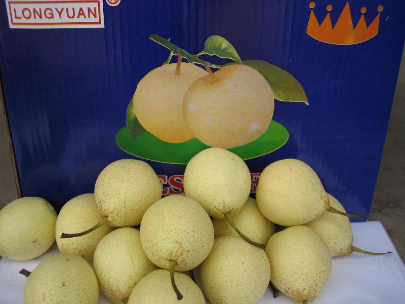 Delicious, Sweet, Juicy Fresh Ya Pear