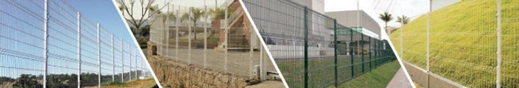 Galvanized PVC Coated Welded Wire Mesh Fence Security Fence