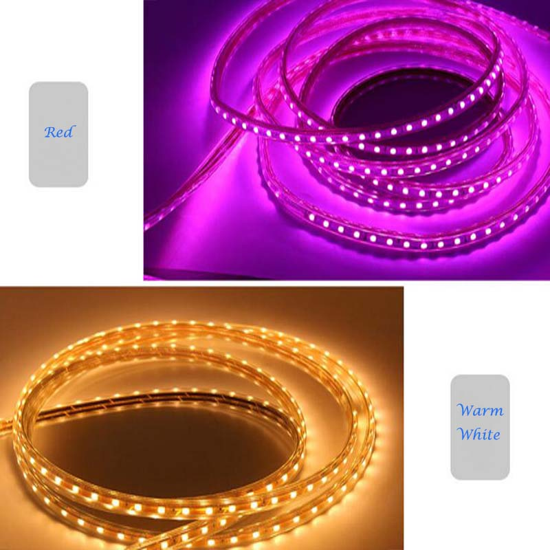 SMD5050 IP65 Copper Wire Flexible Sign LED Rope Light