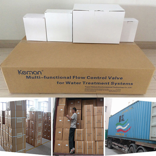 10 Ton Automatic Softener Valve of Downflow Type
