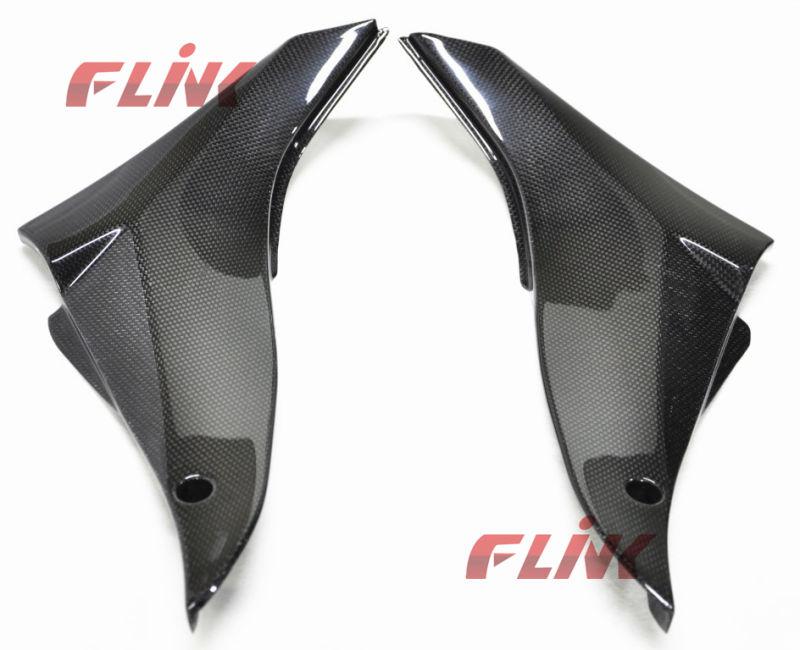 Motorycycle Carbon Fiber Parts Side Panel for Kawasaki 10r 08-09