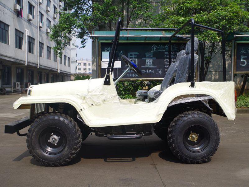 4 Storke CVT with Reverse 150cc UTV Buggy with Ce (JY-ATV020)