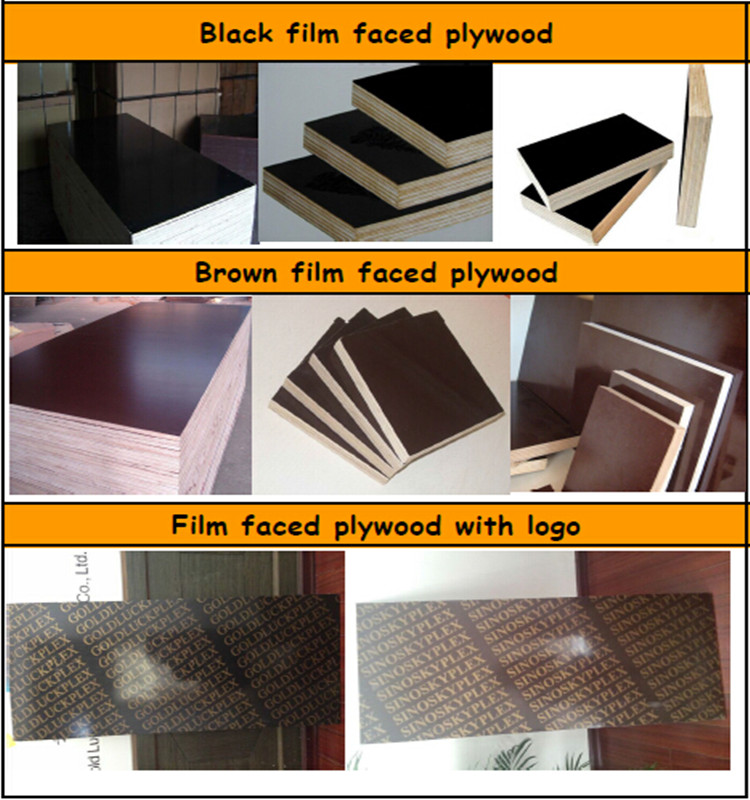 7 Layer Full Poplar Film Faced Plywood 9mm for Concrete Formwork