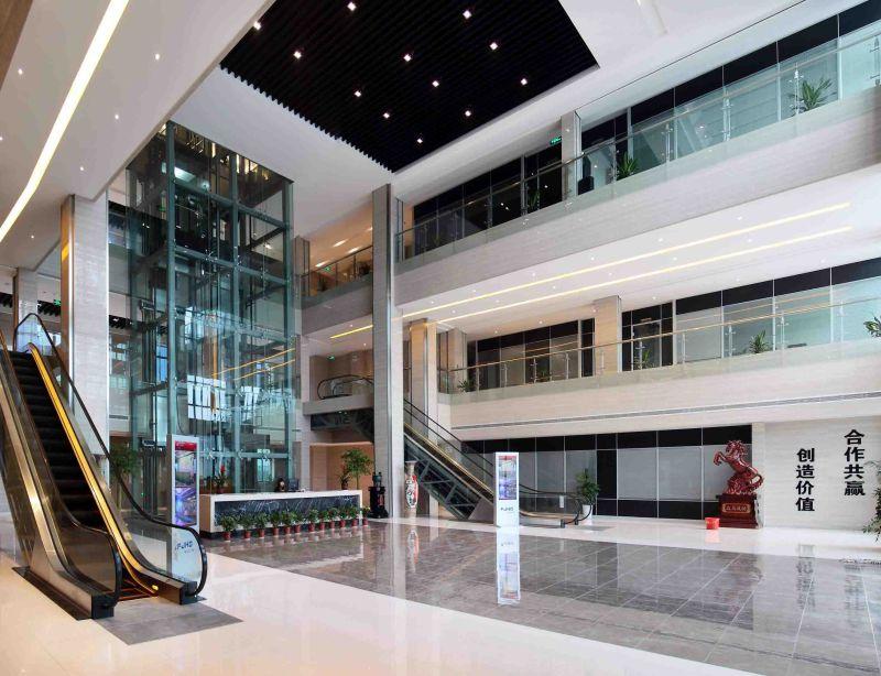 Passenger Elevator for Commercial Building; Shopping Center; Homes