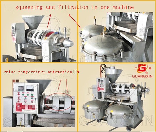 Top Quality Oil Press Machine Guangxin Yzlxq120 New Arrival Oil Press