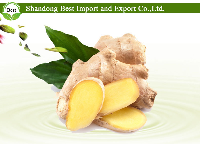 Smooth and Clean Whole Fresh Ginger