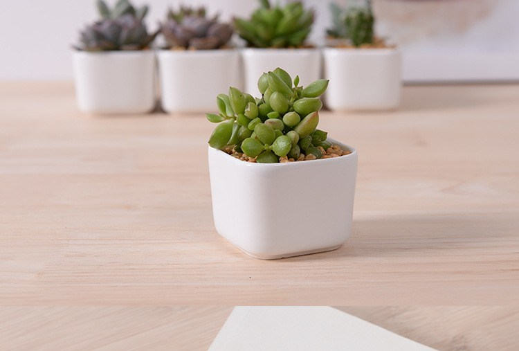 Creative Desktop Decoration Mini White Ceramic Flower Pot