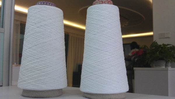 Cotton Spun Polyester Embroidery Thread