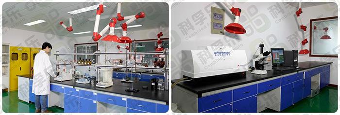 Cfs-172 Polymer Compounding Additives/Alternative to Vtmoeo or Dynasylan 6598