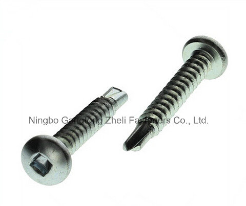 Squqre Pan Head Screw with Stainless Steel