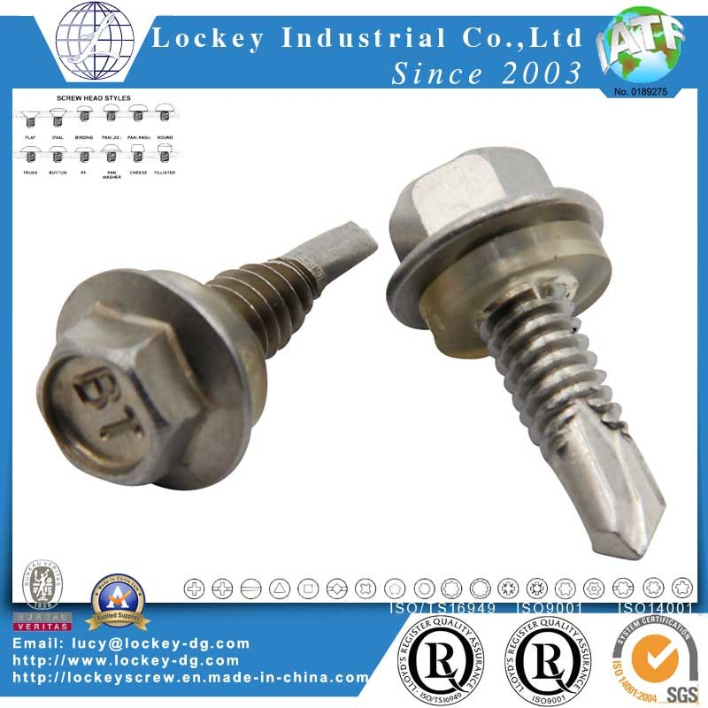 Stainless Steel 316 Hex Washer Head Self Drilling Screw