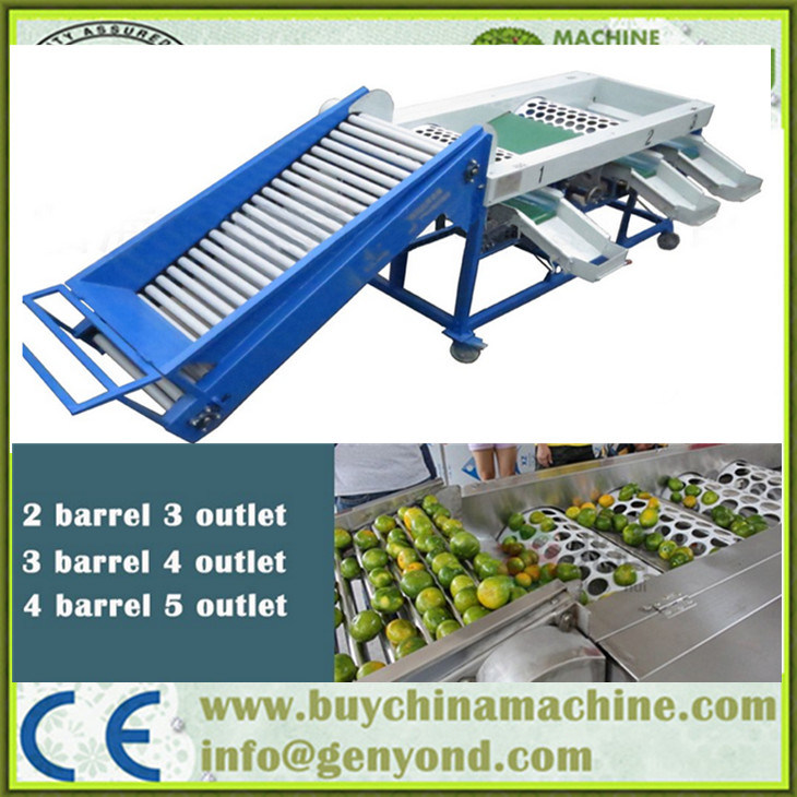 Special Design Automatic Garlic Sorting Machine