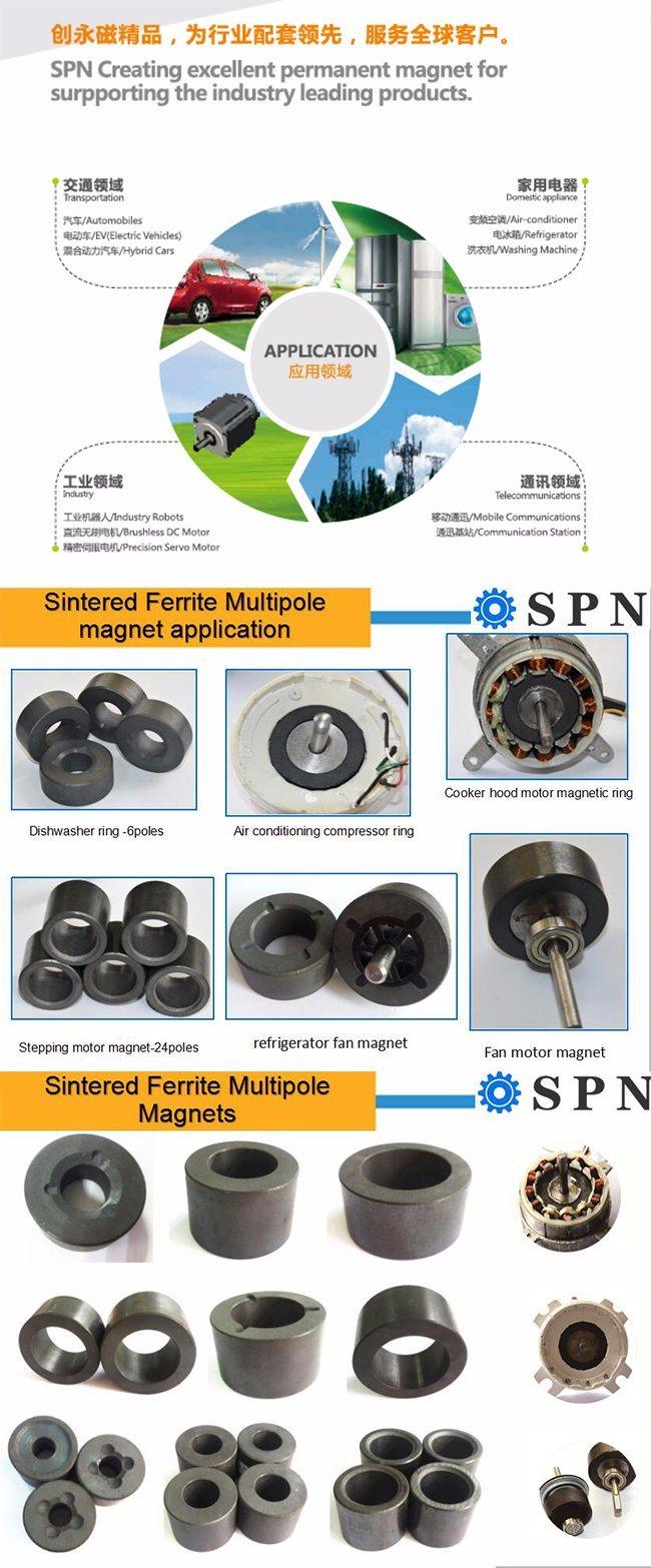 Permanent Ferrite Multipole Magnet Rings for Motors