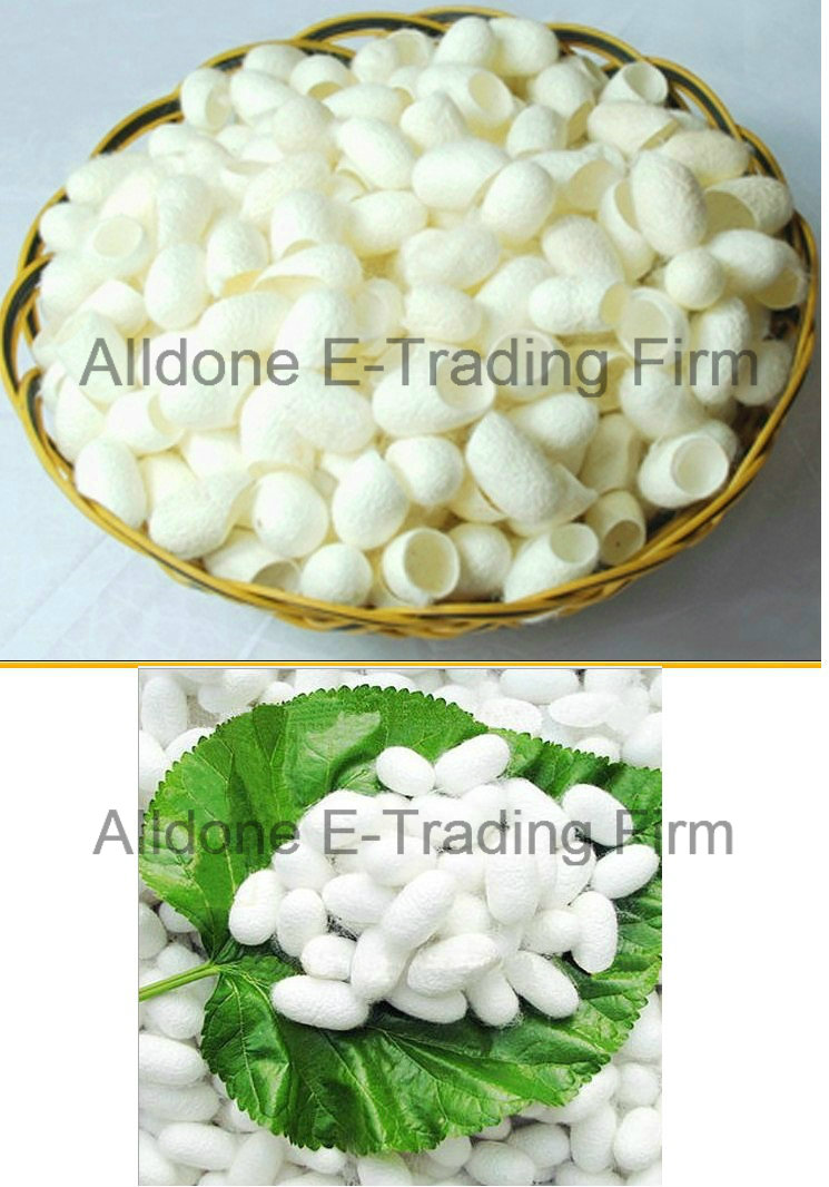Skin Whitening Eco-Friendly Fresh Natural Silk Beauty Cocoons