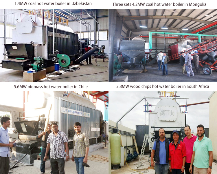 DZL Heating System Hot Water Boiler Machine