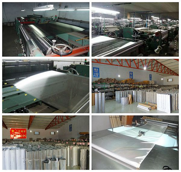 China Best Price Stainless Steel Wire Mesh Screen (SSWMS)