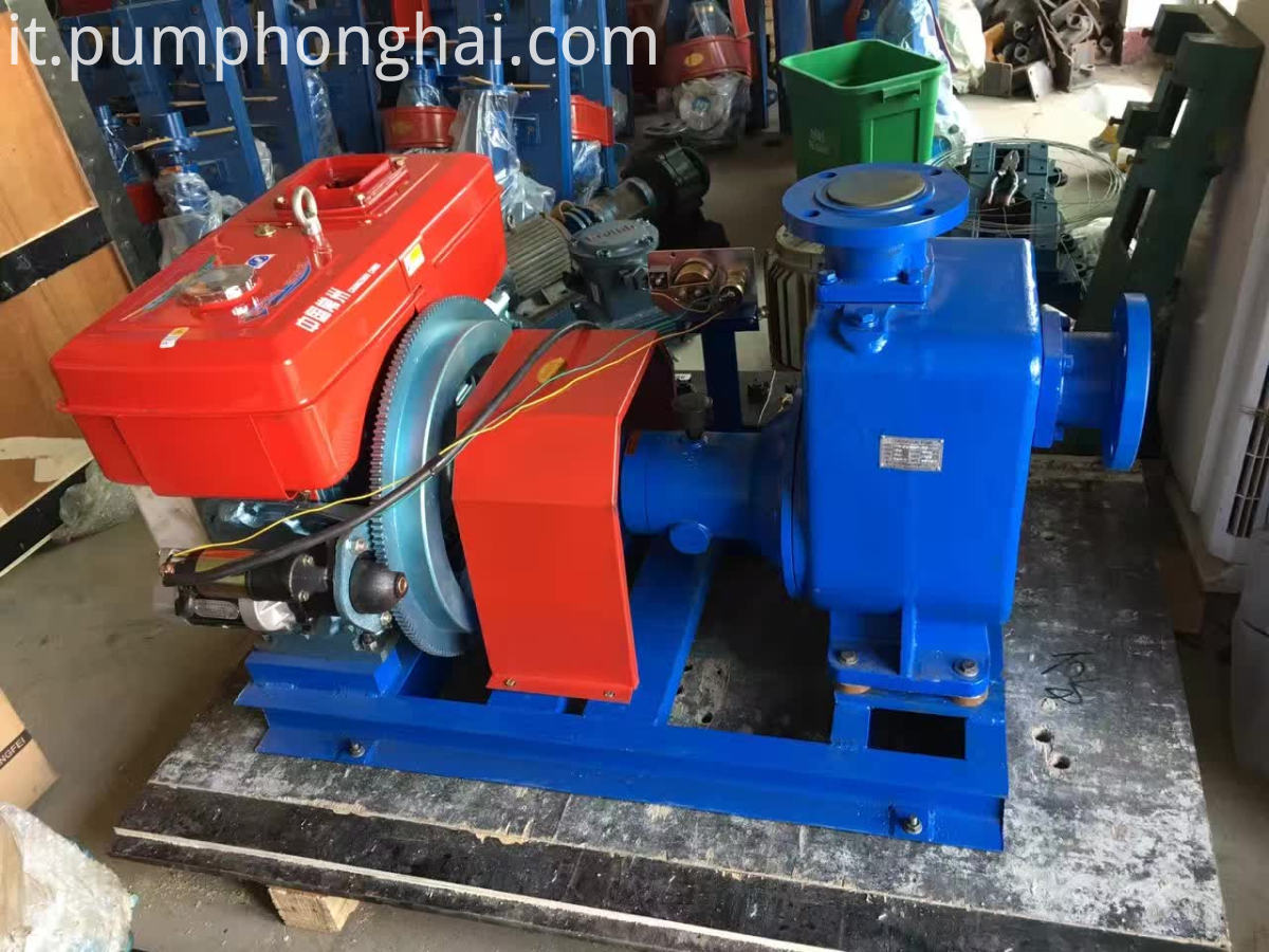 One Year Gas Oil Self-priming Pump