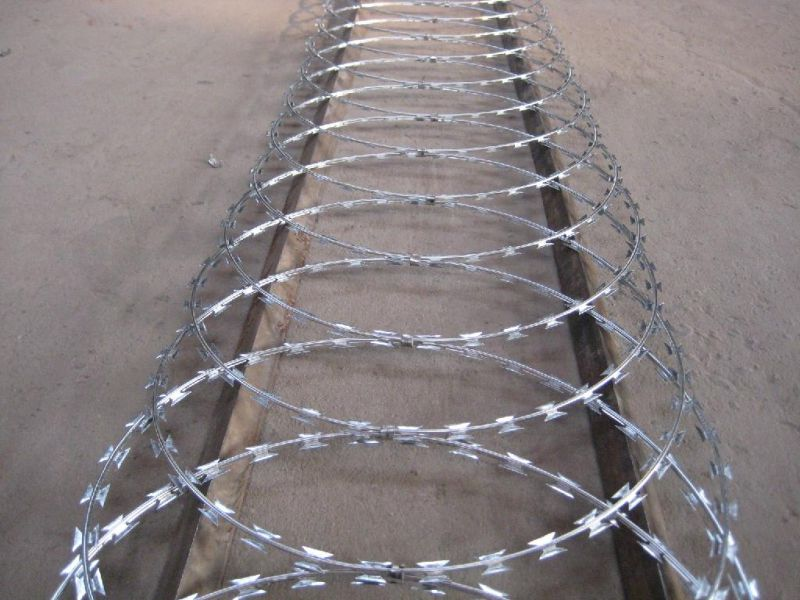 Concertina Razor Wire/Galvanized Concertina Razor Wire/Hight Security Razor Barbed Wire