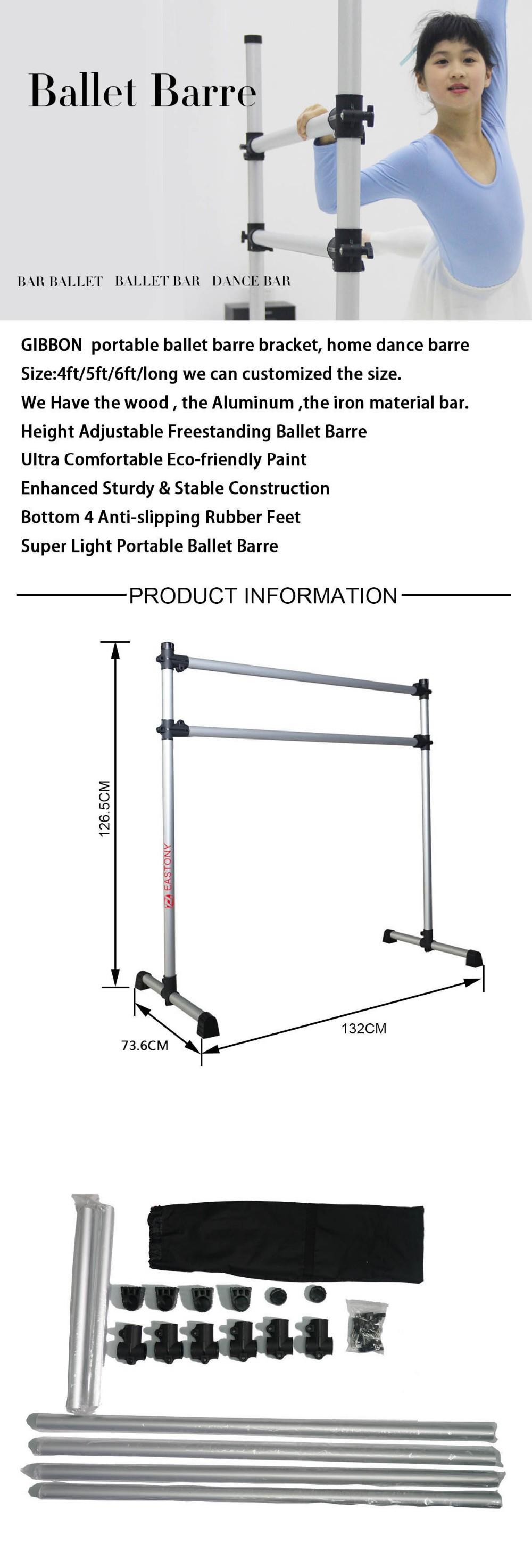 ballet bar gym