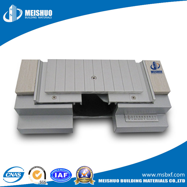 Aluminum Epansion Joint Systems on Floor (MSDSJS)