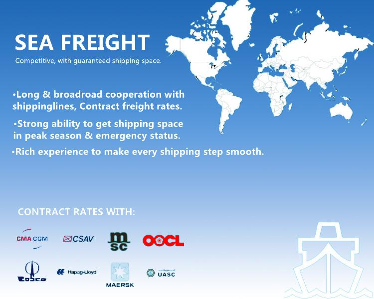 Porfessional Shipping Logistics Service From Shenzhen/Shanghai/Ningbo/Guangzhou, China to Kenya