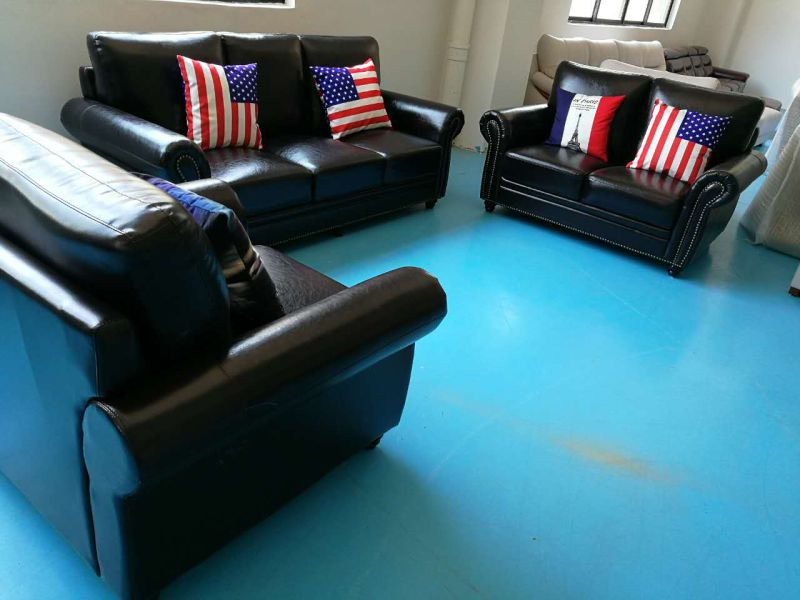 America Sofa, Combination Sofa, 1+2+3 Leather Sofa (8001)