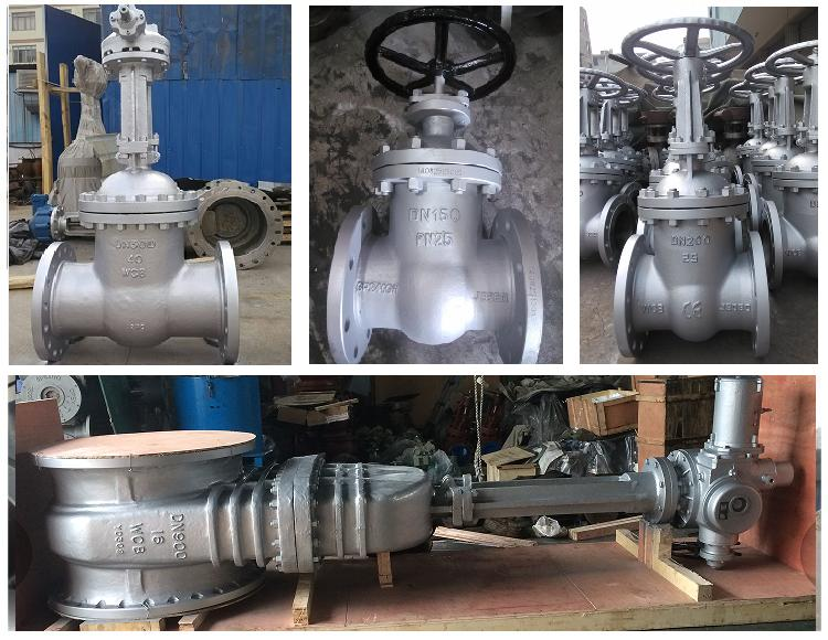 Pn10 Dn600 F4 Gear Operated Wcb Gate Valve