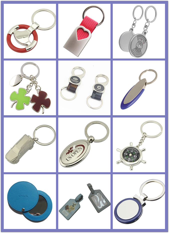Rectangle Logo Silver Blue Metal Promotion Keychain with Plastic (F1002C)